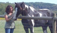 Suzanne with horse