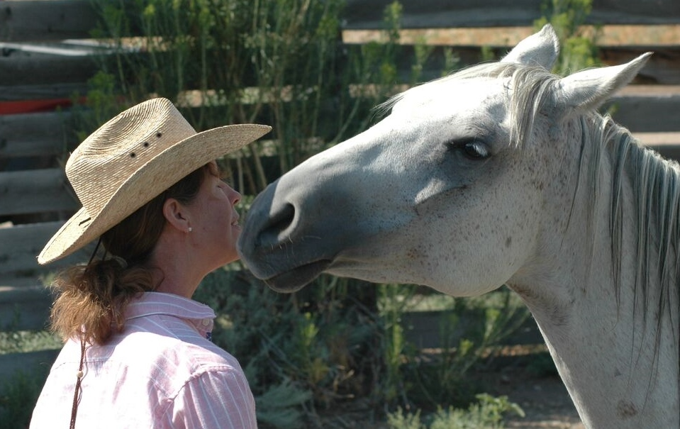 Improving Comfort, Confidence, Communication & Understanding with our horses