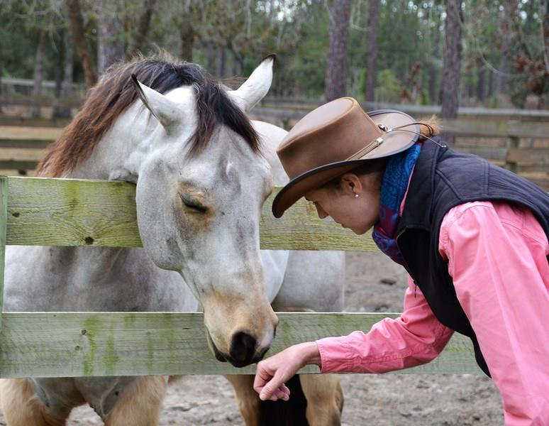 Heidi Potter Holistic Horsemanship Clinic - Connecting Mind, Body & Spirit