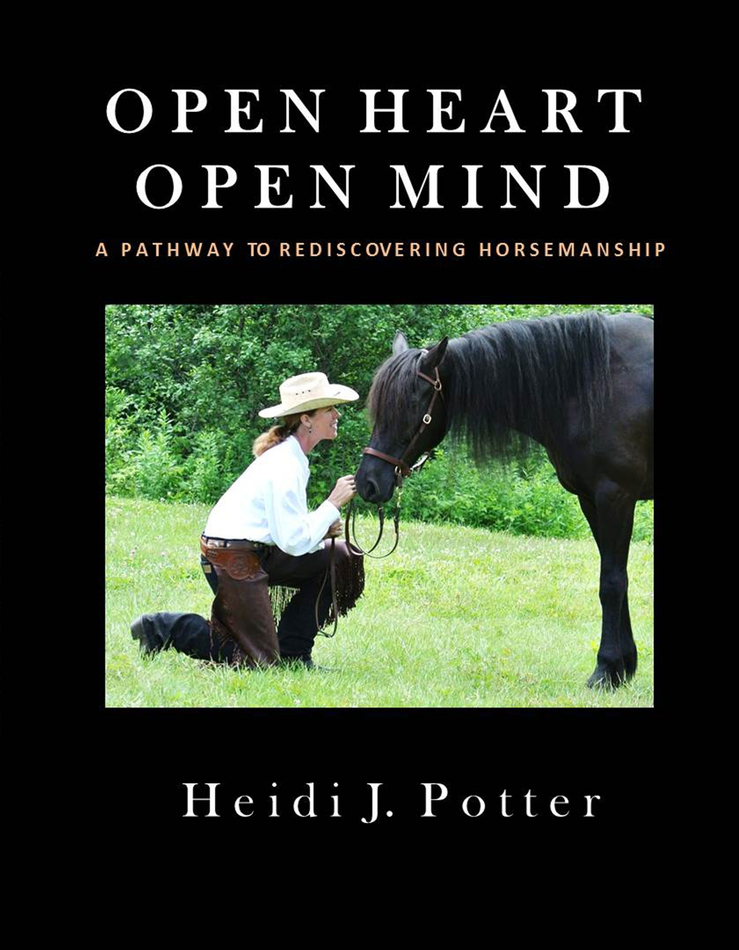 Open Heart Open Mind the book
